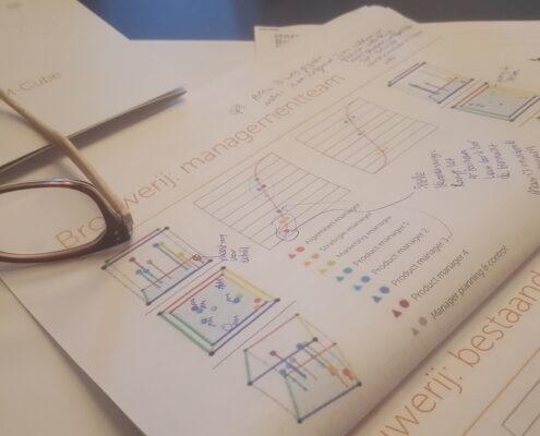 AEM-Cube assessment